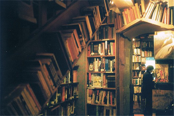 我真不想当掌门小说,我真不想当掌门无广告版阅读